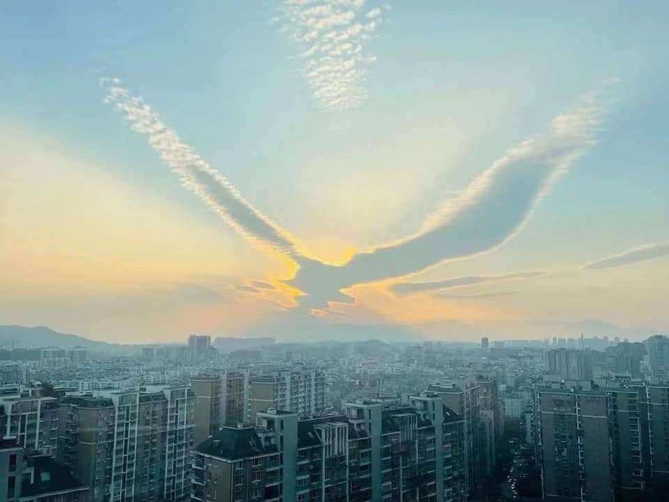 VIDEO] Awan Berbentuk Burung Pheonix Muncul Di Langit China! Surah Al-Jathiyah Ayat 3 Jelaskan Perkara Ini - Kashoorga